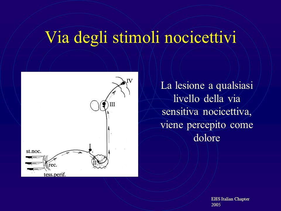 EHS Italian Chapter 2005 Sede delle lesioni nervose Il dolore post operatorio è causato da una lesione periferica