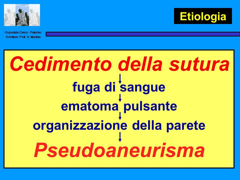 Ospedale Civico - Palermo Direttore: Prof. A. Martino Casistica