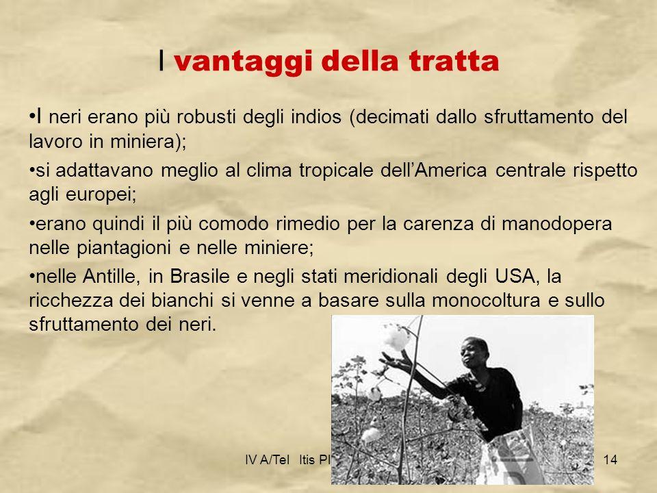IV A/Tel Itis Planck 2003-0414 I vantaggi della tratta I neri erano più robusti degli indios (decimati dallo sfruttamento del lavoro in miniera); si a