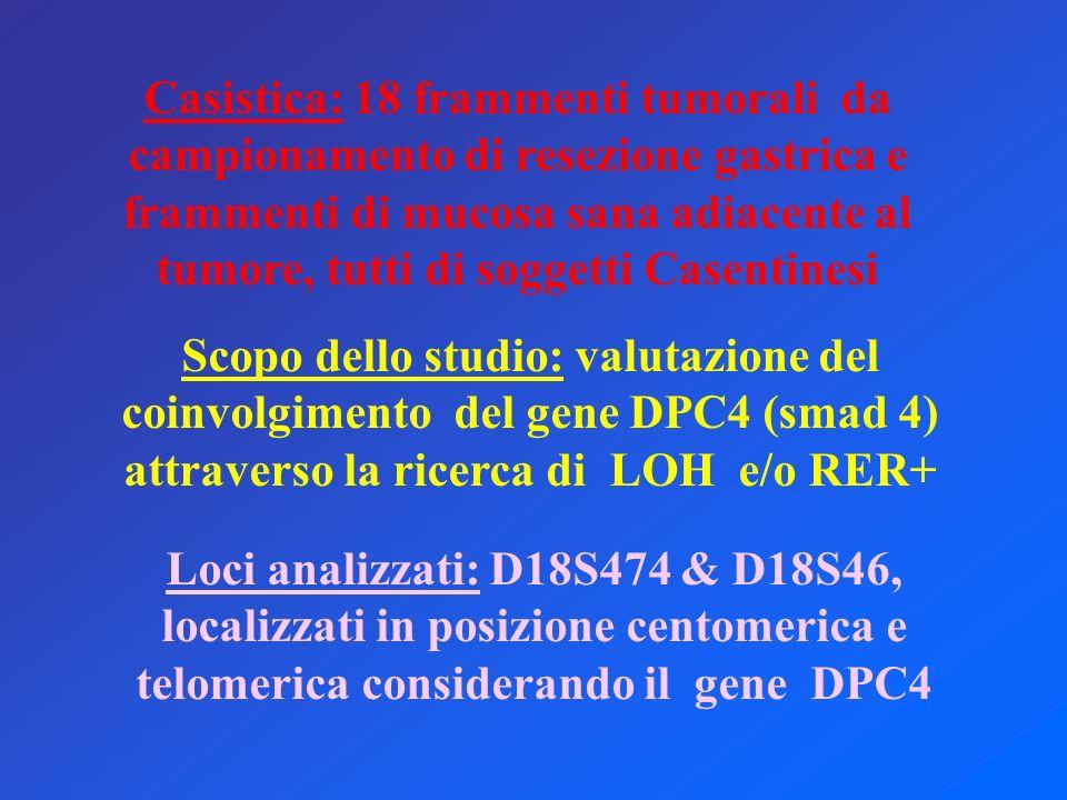 Casistica: 18 frammenti tumorali da campionamento di resezione gastrica e frammenti di mucosa sana adiacente al tumore, tutti di soggetti Casentinesi Scopo dello studio: valutazione del coinvolgimento del gene DPC4 (smad 4) attraverso la ricerca di LOH e/o RER+ Loci analizzati: D18S474 & D18S46, localizzati in posizione centomerica e telomerica considerando il gene DPC4