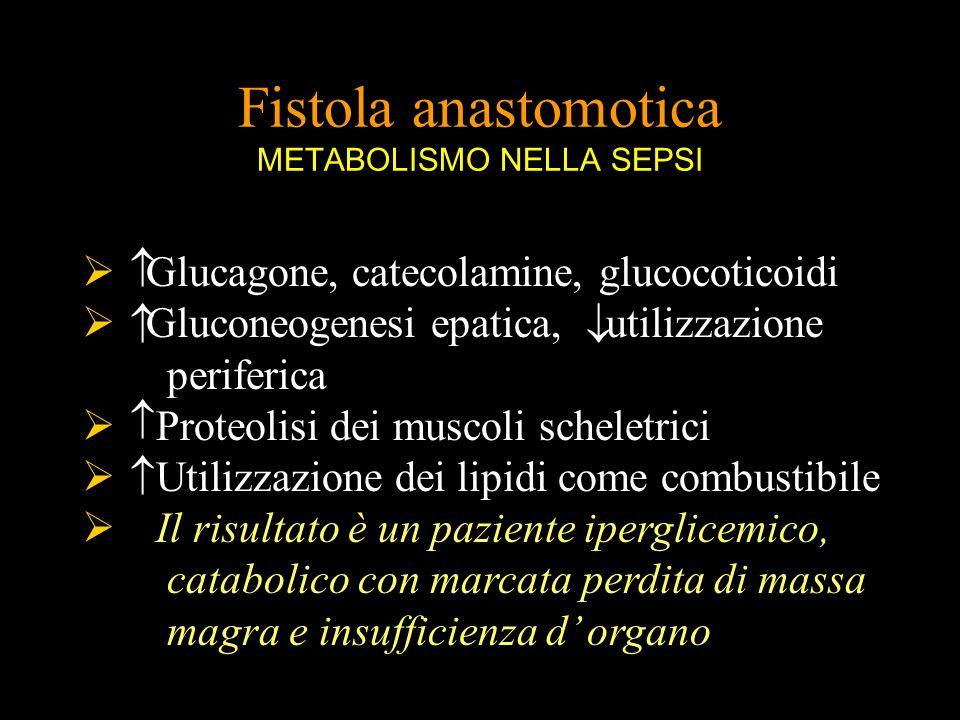Glucagone, catecolamine, glucocoticoidi Gluconeogenesi epatica, utilizzazione periferica Proteolisi dei muscoli scheletrici Utilizzazione dei lipidi c