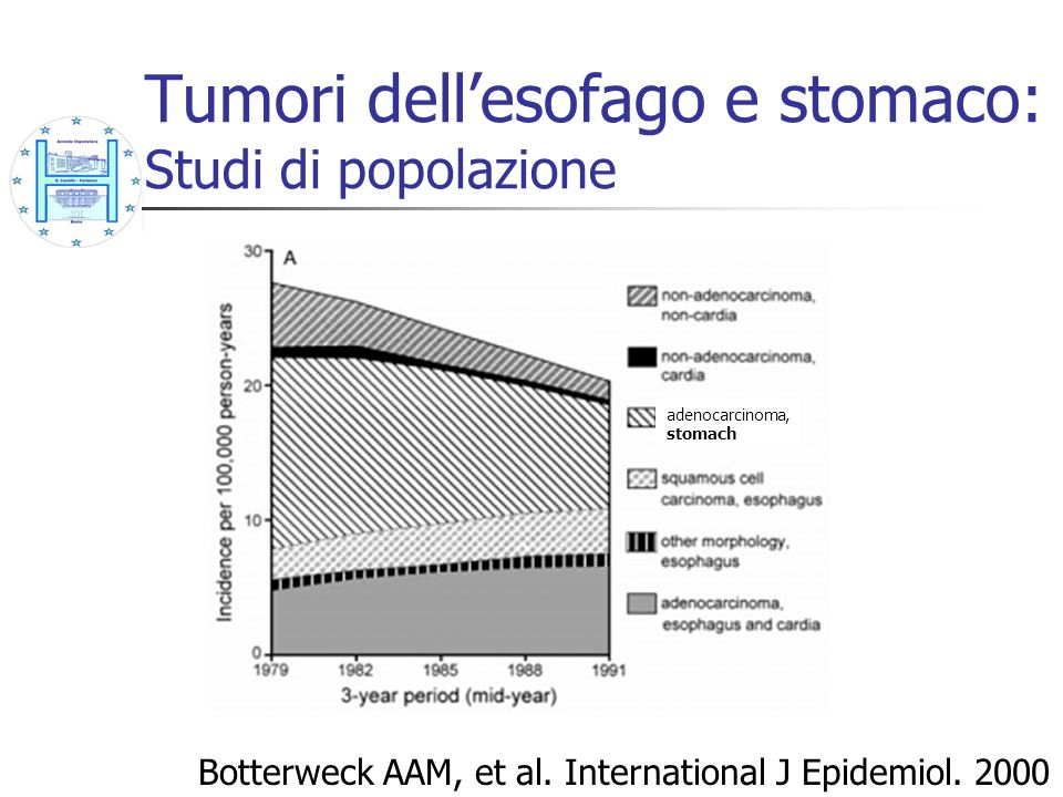 Tumori dellesofago e stomaco: Studi di popolazione Botterweck AAM, et al. International J Epidemiol. 2000 adenocarcinoma, stomach