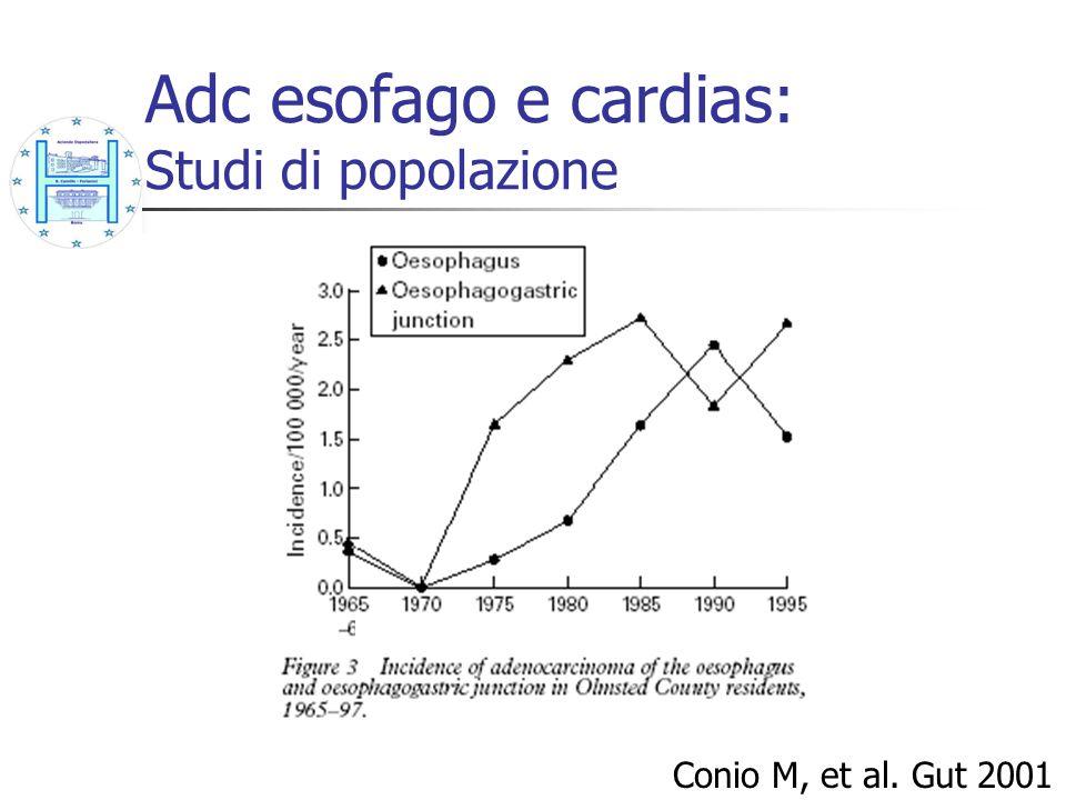 AdenoCa esofago e cardias: Fattori di rischio Chow WH, et al.