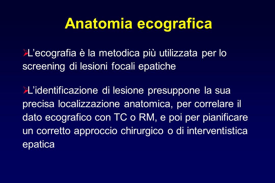 V. Sovraepatica dx V. Sovraepatica media ant post