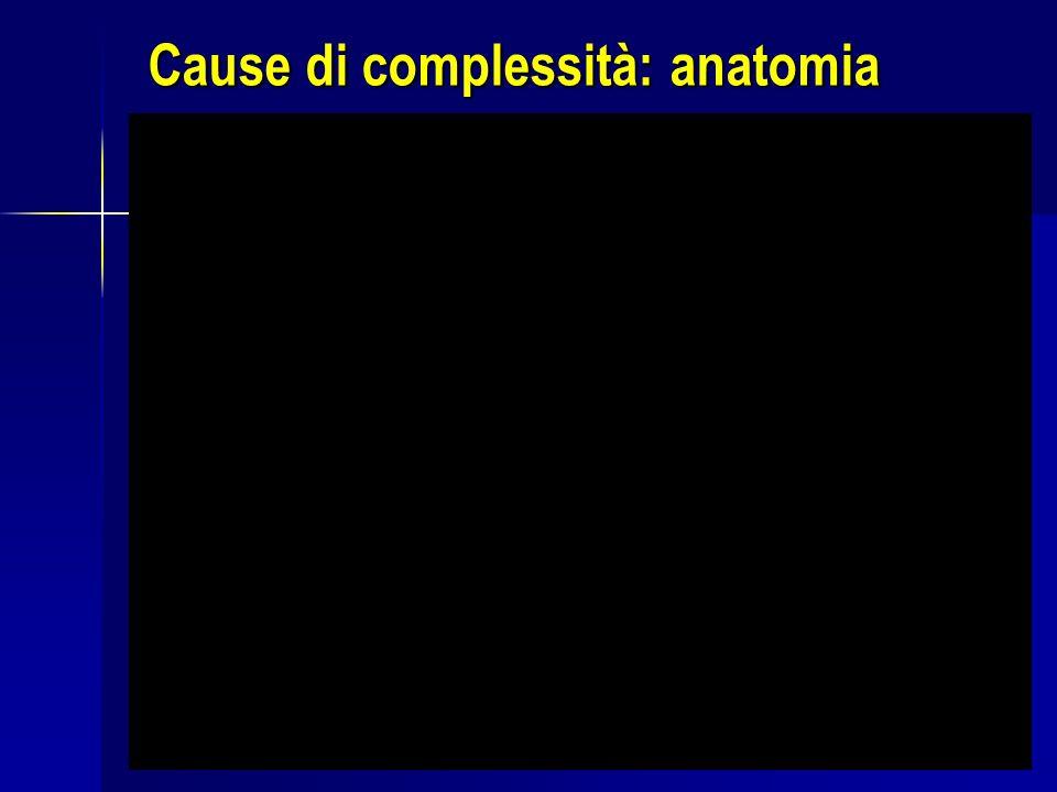 Cause di complessità: anatomia