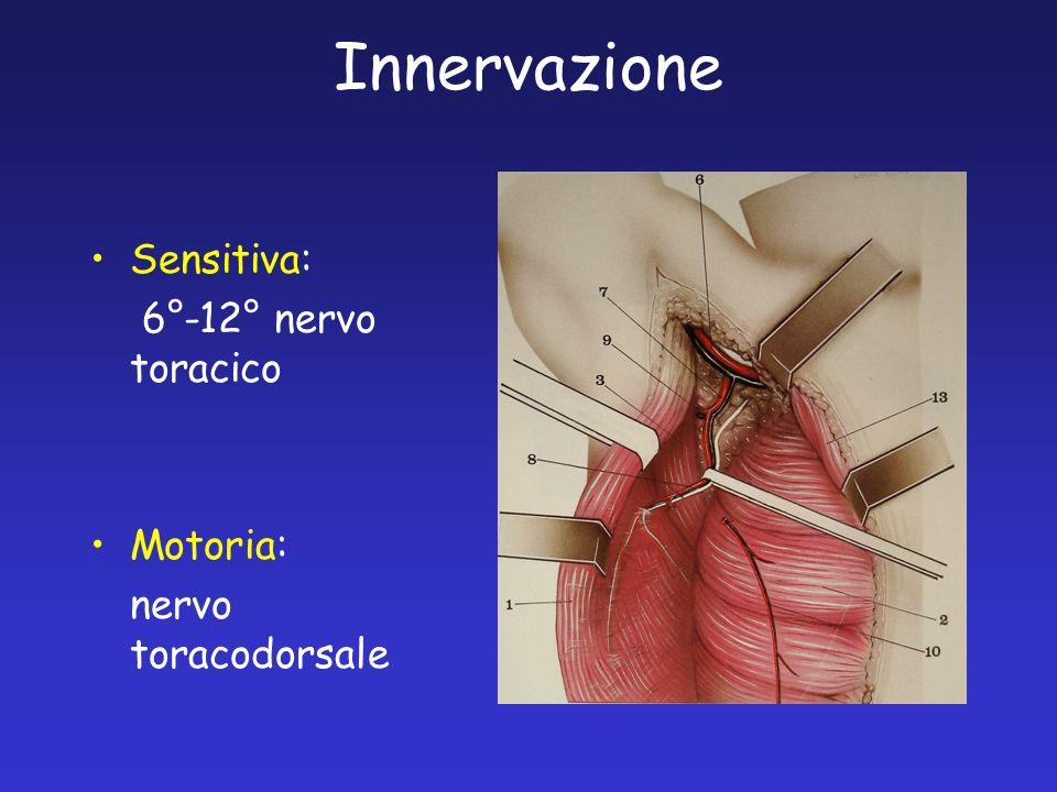 Innervazione Sensitiva: 6°-12° nervo toracico Motoria: nervo toracodorsale