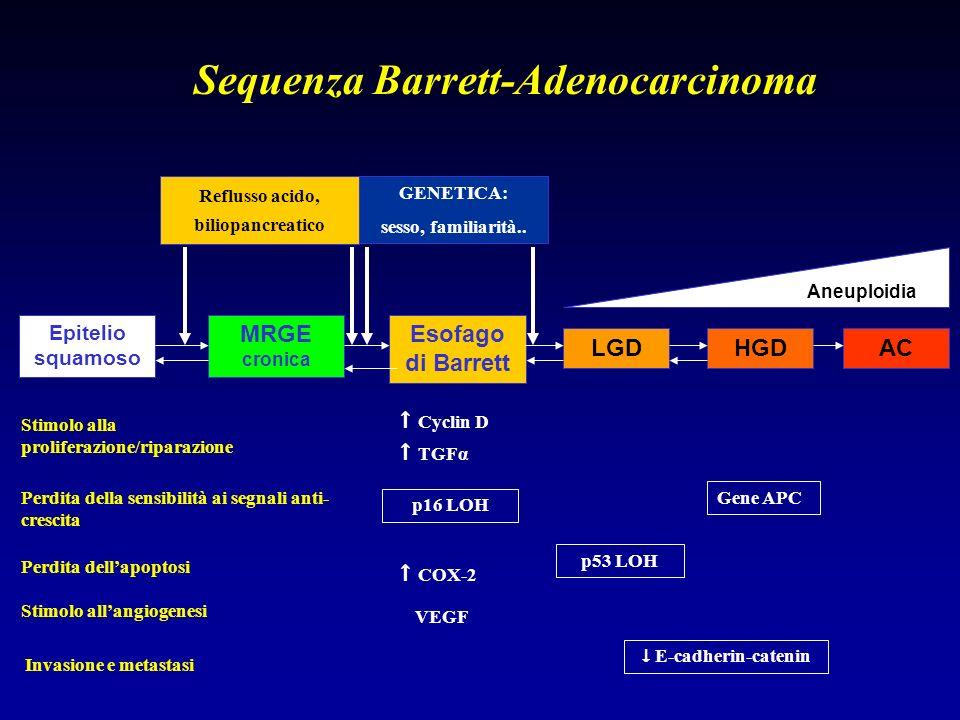 Epitelio squamoso MRGE cronica Esofago di Barrett LGDHGDAC Reflusso acido, biliopancreatico GENETICA: sesso, familiarità.. Cyclin D TGFα p16 LOH COX-2