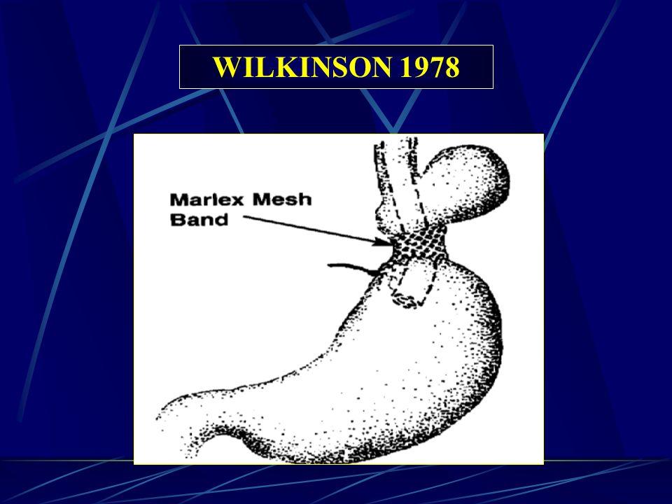 WILKINSON 1978