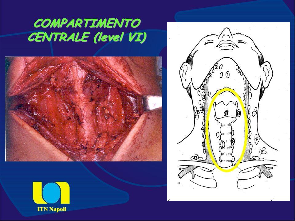COMPARTIMENTO CENTRALE (level VI) ITN Napoli