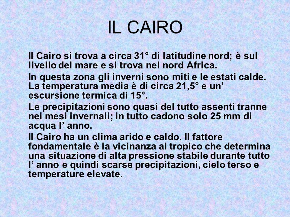 IL CAIRO Il Cairo si trova a circa 31° di latitudine nord; è sul livello del mare e si trova nel nord Africa. In questa zona gli inverni sono miti e l