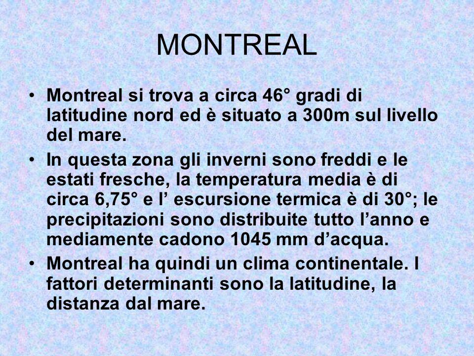 MONTREAL Montreal si trova a circa 46° gradi di latitudine nord ed è situato a 300m sul livello del mare. In questa zona gli inverni sono freddi e le