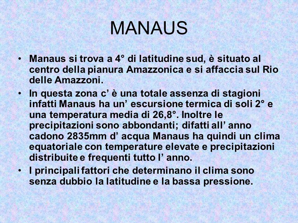 MANAUS Manaus si trova a 4° di latitudine sud, è situato al centro della pianura Amazzonica e si affaccia sul Rio delle Amazzoni. In questa zona c è u
