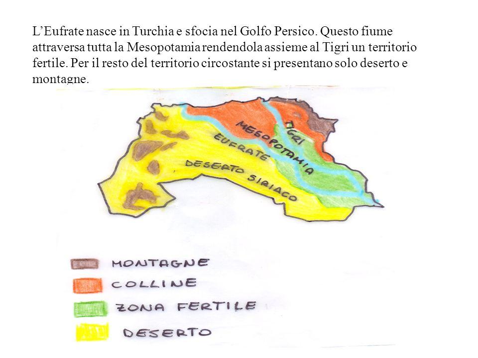 LEufrate nasce in Turchia e sfocia nel Golfo Persico. Questo fiume attraversa tutta la Mesopotamia rendendola assieme al Tigri un territorio fertile.