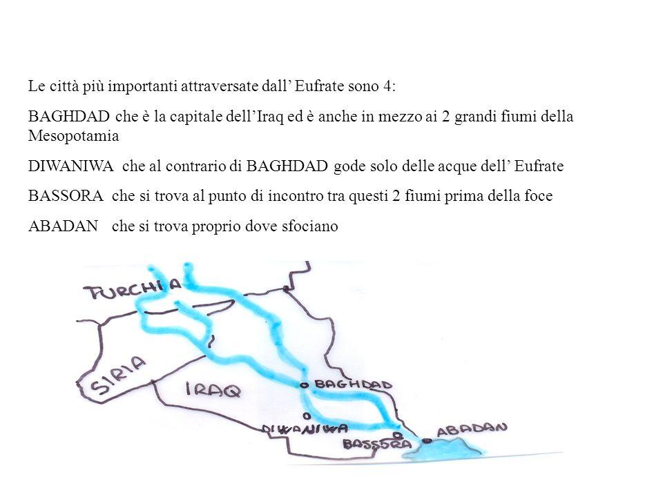 Le città più importanti attraversate dall Eufrate sono 4: BAGHDAD che è la capitale dellIraq ed è anche in mezzo ai 2 grandi fiumi della Mesopotamia D