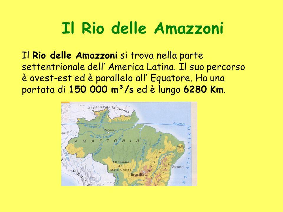 Il Rio delle Amazzoni Il Rio delle Amazzoni si trova nella parte settentrionale dell America Latina. Il suo percorso è ovest-est ed è parallelo all Eq