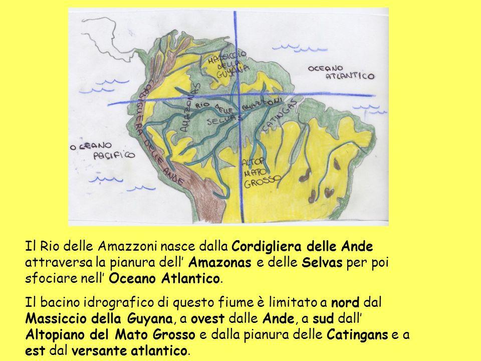 Il Rio delle Amazzoni nasce dalla Cordigliera delle Ande attraversa la pianura dell Amazonas e delle Selvas per poi sfociare nell Oceano Atlantico.