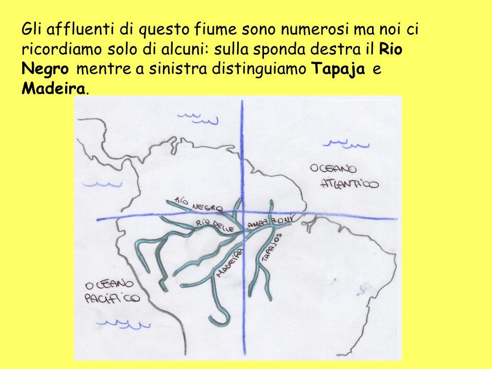 Gli affluenti di questo fiume sono numerosi ma noi ci ricordiamo solo di alcuni: sulla sponda destra il Rio Negro mentre a sinistra distinguiamo Tapaj