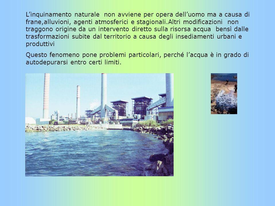 Linquinamento naturale non avviene per opera delluomo ma a causa di frane,alluvioni, agenti atmosferici e stagionali.Altri modificazioni non traggono