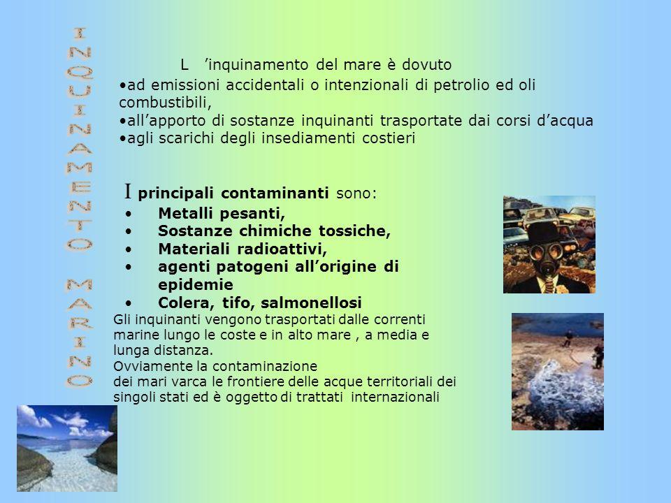 L inquinamento del mare è dovuto ad emissioni accidentali o intenzionali di petrolio ed oli combustibili, allapporto di sostanze inquinanti trasportat