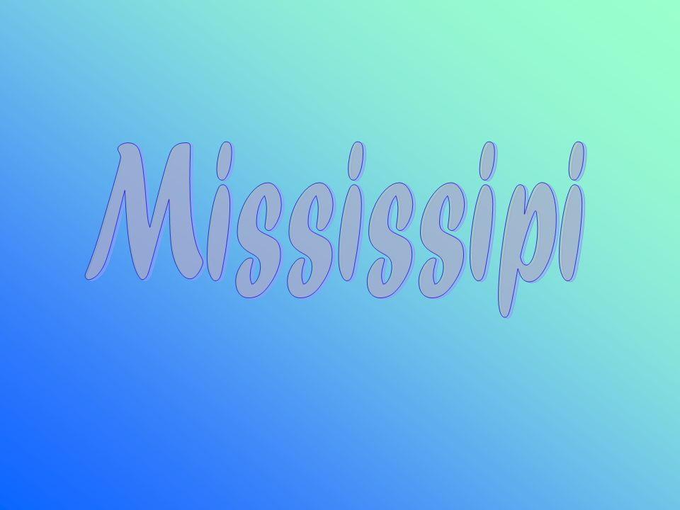 Il fiume Mississipi-Missouri nasce sulle Montagne Rocciose e sfocia nel Golfo del Messico.
