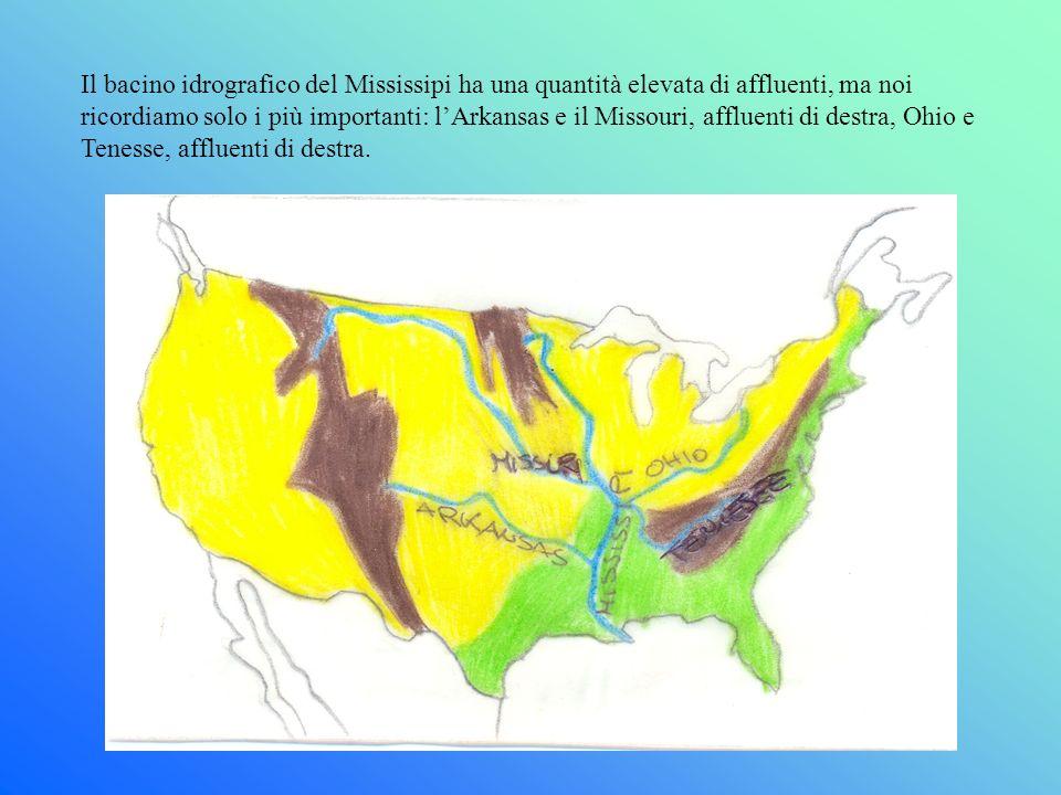 Il bacino idrografico del Mississipi ha una quantità elevata di affluenti, ma noi ricordiamo solo i più importanti: lArkansas e il Missouri, affluenti