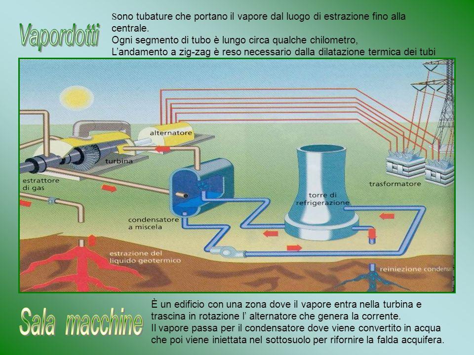 S ono tubature che portano il vapore dal luogo di estrazione fino alla centrale. Ogni segmento di tubo è lungo circa qualche chilometro, Landamento a