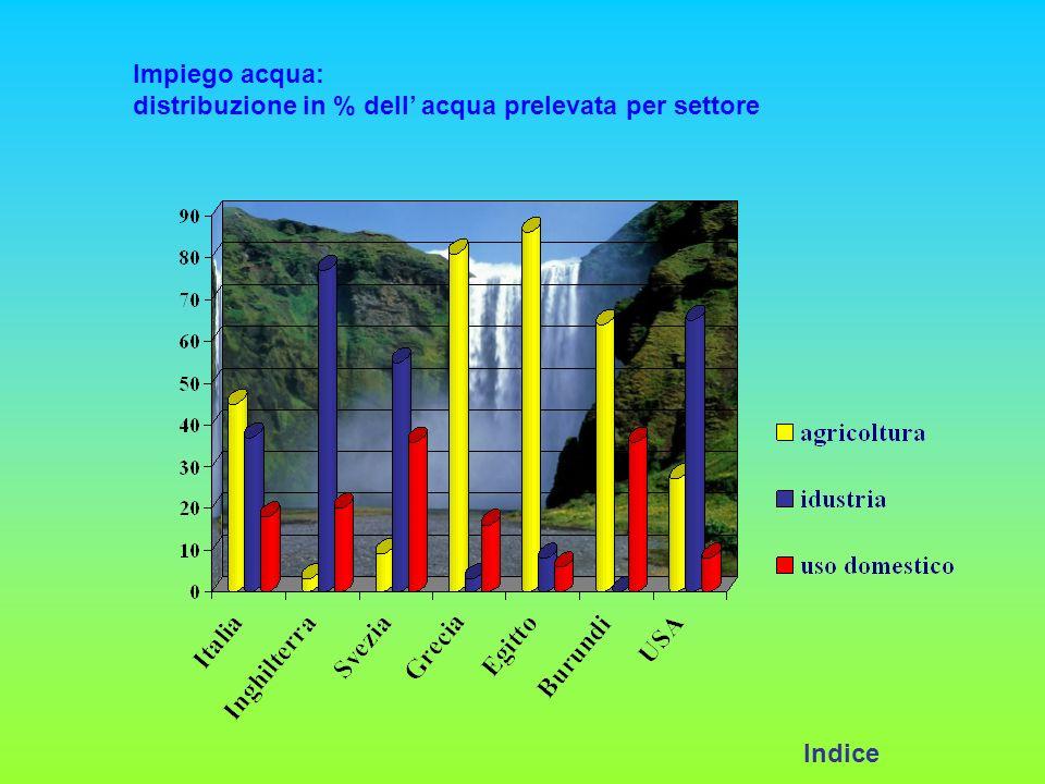 Impiego acqua: distribuzione in % dell acqua prelevata per settore Indice