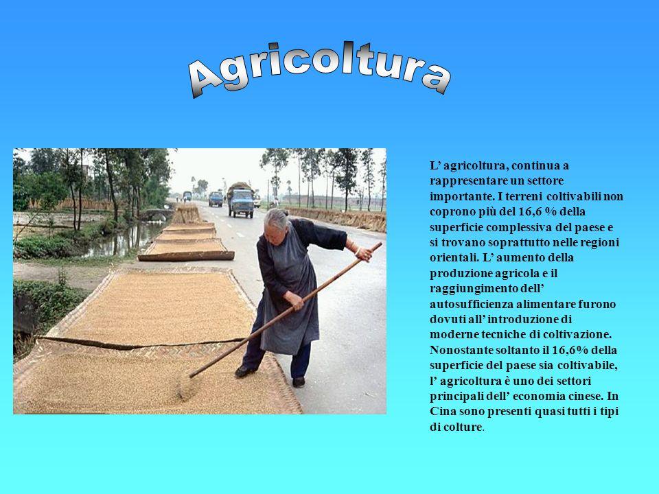 L agricoltura, continua a rappresentare un settore importante. I terreni coltivabili non coprono più del 16,6 % della superficie complessiva del paese