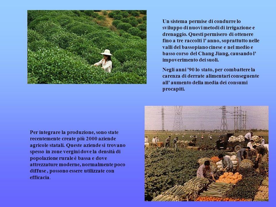 Un sistema permise di condurre lo sviluppo di nuovi metodi di irrigazione e drenaggio. Questi permisero di ottenere fino a tre raccolti l anno, soprat