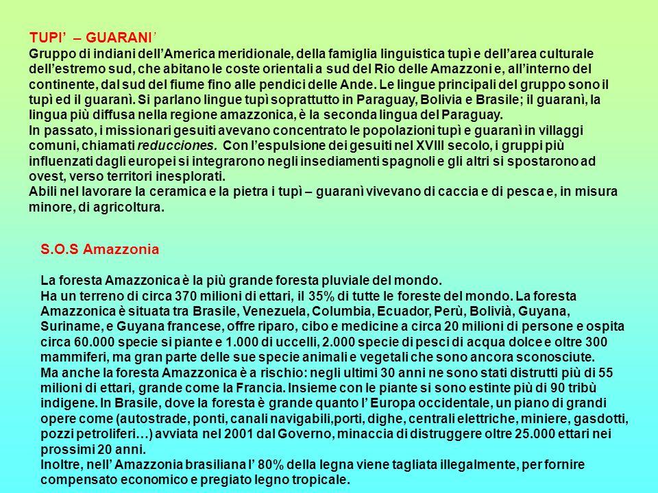 TUPI – GUARANI Gruppo di indiani dellAmerica meridionale, della famiglia linguistica tupì e dellarea culturale dellestremo sud, che abitano le coste o