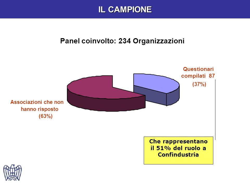 Panel coinvolto: 234 Organizzazioni Questionari compilati 87 (37%) Associazioni che non hanno risposto (63%) Che rappresentano il 51% del ruolo a Confindustria IL CAMPIONE