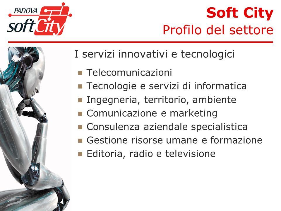 I servizi innovativi e tecnologici Telecomunicazioni Tecnologie e servizi di informatica Ingegneria, territorio, ambiente Comunicazione e marketing Consulenza aziendale specialistica Gestione risorse umane e formazione Editoria, radio e televisione Soft City Profilo del settore