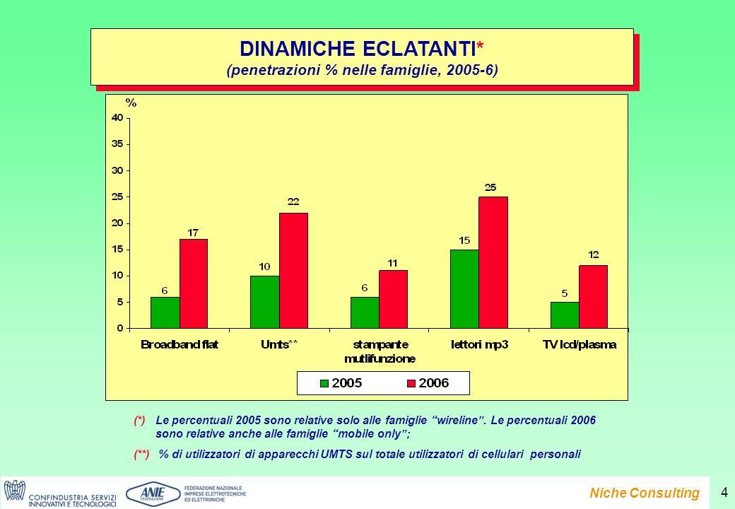 Presentazione del Rapporto e-Family 2007 Niche Consulting 4 DINAMICHE ECLATANTI* (penetrazioni % nelle famiglie, 2005-6) DINAMICHE ECLATANTI* (penetrazioni % nelle famiglie, 2005-6) (*) Le percentuali 2005 sono relative solo alle famiglie wireline.