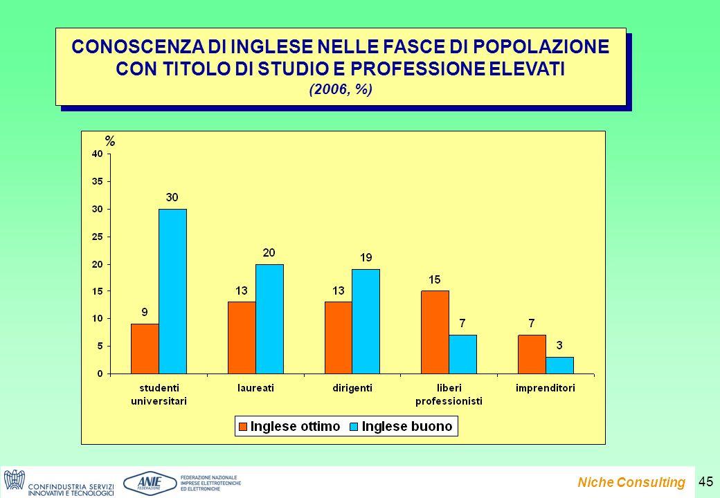Presentazione del Rapporto e-Family 2007 Niche Consulting 45 CONOSCENZA DI INGLESE NELLE FASCE DI POPOLAZIONE CON TITOLO DI STUDIO E PROFESSIONE ELEVATI (2006, %) CONOSCENZA DI INGLESE NELLE FASCE DI POPOLAZIONE CON TITOLO DI STUDIO E PROFESSIONE ELEVATI (2006, %)