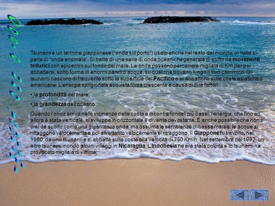 Tsunami è un termine giapponese (onda sul porto) usato anche nel resto del mondo; in Italia si parla di onda anomala. Si tratta di una serie di onde o