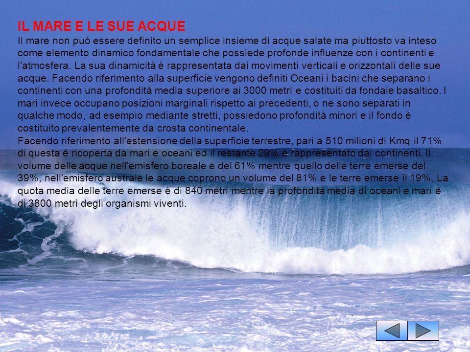 IL MARE E LE SUE ACQUE Il mare non può essere definito un semplice insieme di acque salate ma piuttosto va inteso come elemento dinamico fondamentale