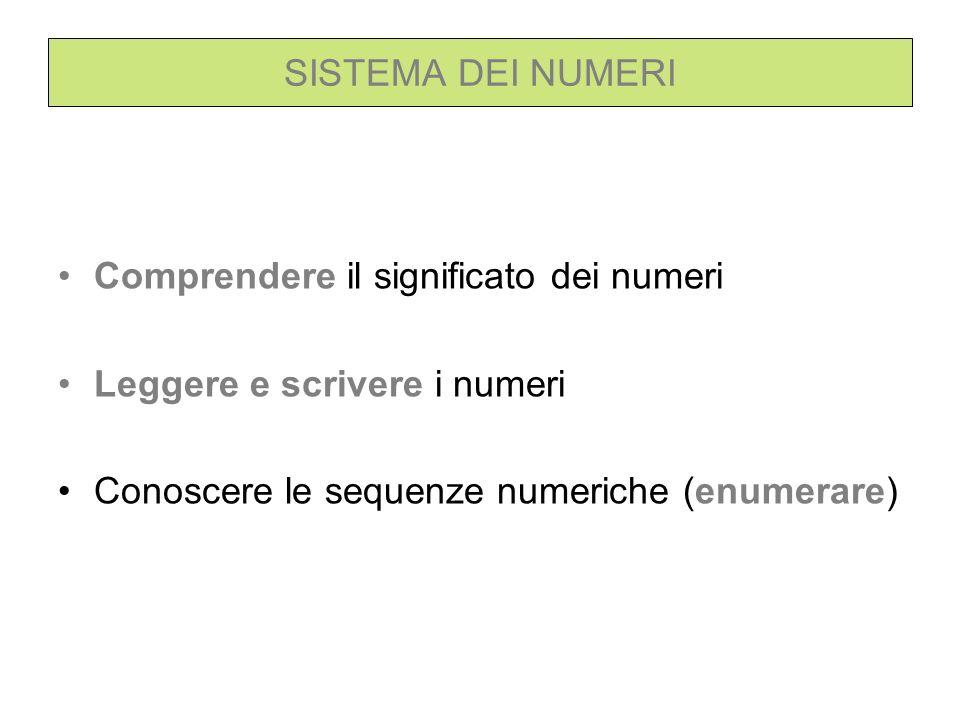 SISTEMA DEI NUMERI Comprendere il significato dei numeri Leggere e scrivere i numeri Conoscere le sequenze numeriche (enumerare)