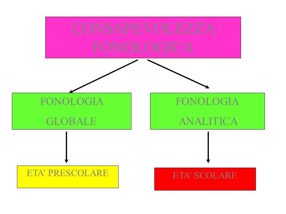 FONOLOGIA GLOBALE SVILUPPO SPONTANEO Età prescolare Riconoscimento/riproduzione rime Scansione sillabica parole Manipolazione parole attraverso suffissi Giudizi di lunghezza parole