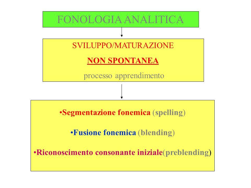 FONOLOGIA ANALITICA SVILUPPO/MATURAZIONE NON SPONTANEA processo apprendimento Segmentazione fonemica (spelling) Fusione fonemica (blending) Riconoscim