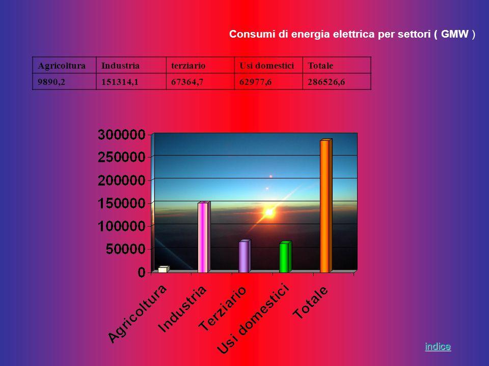 Consumi di energia elettrica per settori ( GMW ) AgricolturaIndustriaterziarioUsi domesticiTotale 9890,2151314,167364,762977,6286526,6 indice
