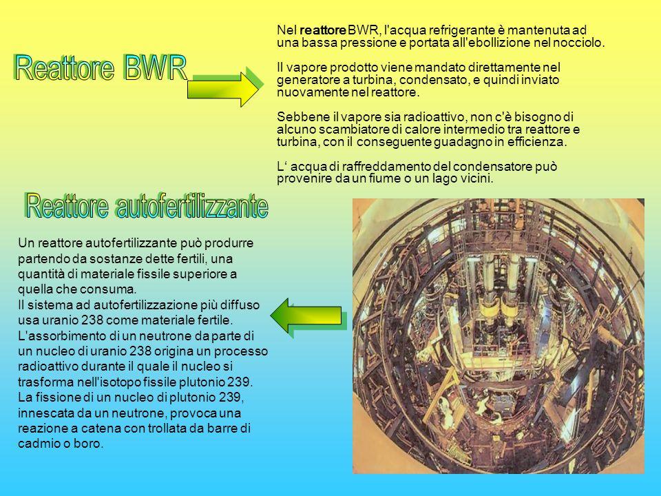 Un reattore autofertilizzante può produrre partendo da sostanze dette fertili, una quantità di materiale fissile superiore a quella che consuma. Il si