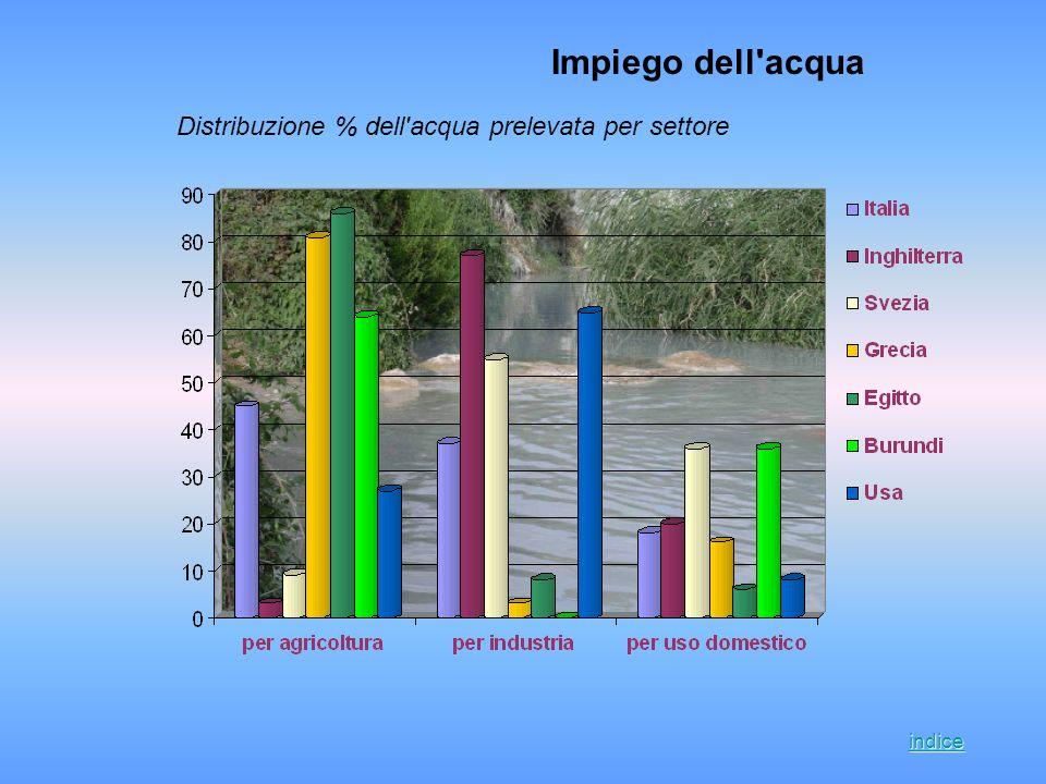 Distribuzione % dell'acqua prelevata per settore Impiego dell'acqua indice