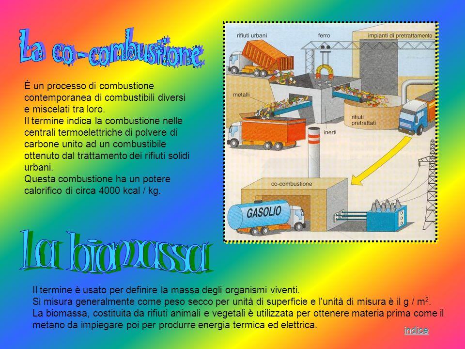 È un processo di combustione contemporanea di combustibili diversi e miscelati tra loro. Il termine indica la combustione nelle centrali termoelettric