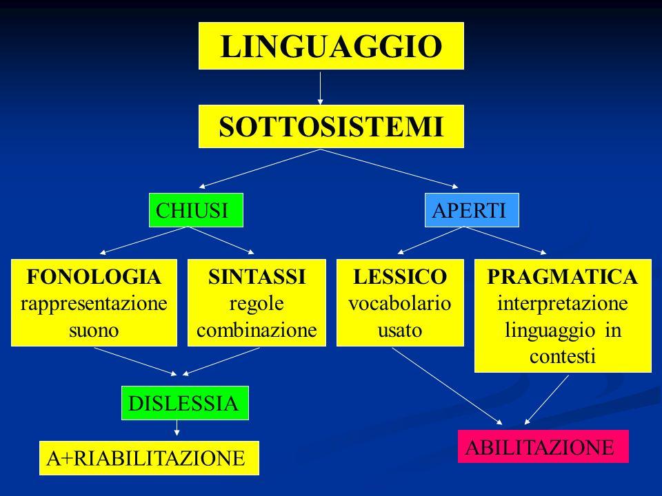 LINGUAGGIO SOTTOSISTEMI FONOLOGIA rappresentazione suono LESSICO vocabolario usato SINTASSI regole combinazione PRAGMATICA interpretazione linguaggio in contesti DISLESSIA CHIUSIAPERTI A+RIABILITAZIONE ABILITAZIONE