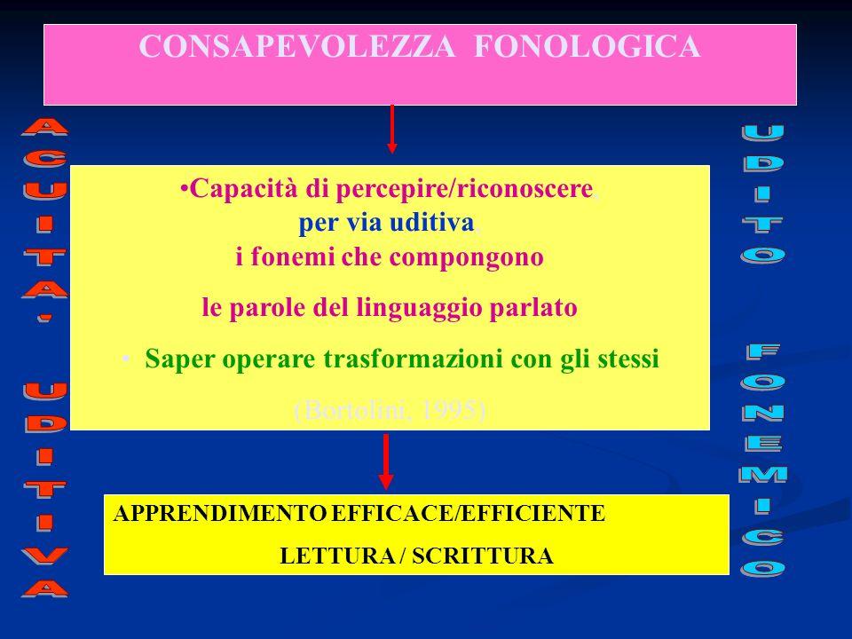 CONSAPEVOLEZZA FONOLOGICA APPRENDIMENTO EFFICACE/EFFICIENTE LETTURA / SCRITTURA Capacità di percepire/riconoscere, per via uditiva, i fonemi che compongono le parole del linguaggio parlato Saper operare trasformazioni con gli stessi (Bortolini, 1995)