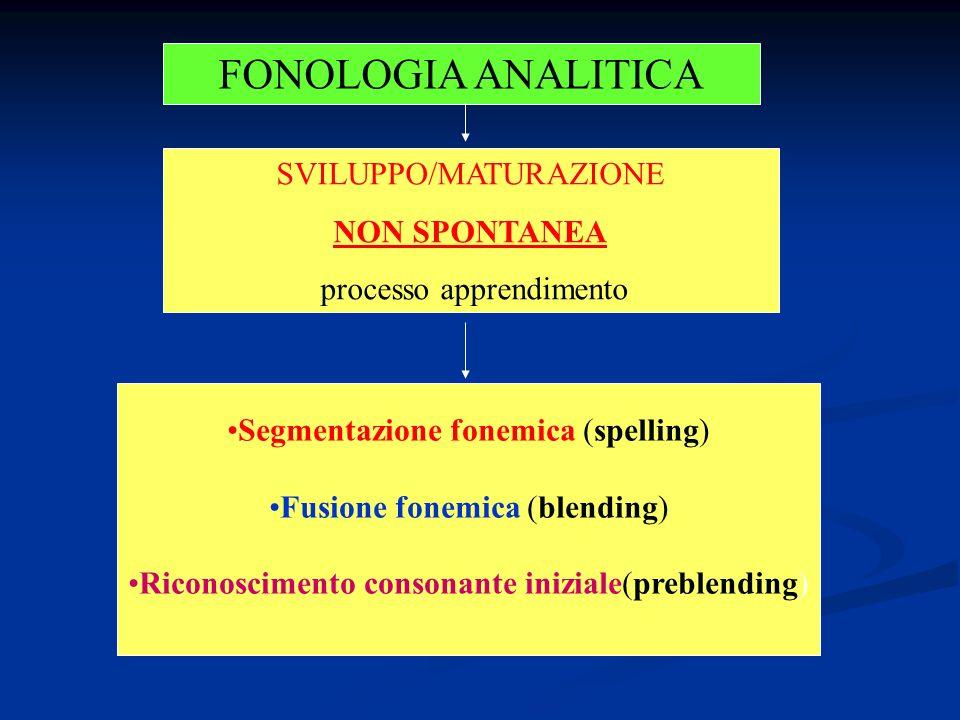 FONOLOGIA ANALITICA SVILUPPO/MATURAZIONE NON SPONTANEA processo apprendimento Segmentazione fonemica (spelling) Fusione fonemica (blending) Riconoscimento consonante iniziale(preblending)