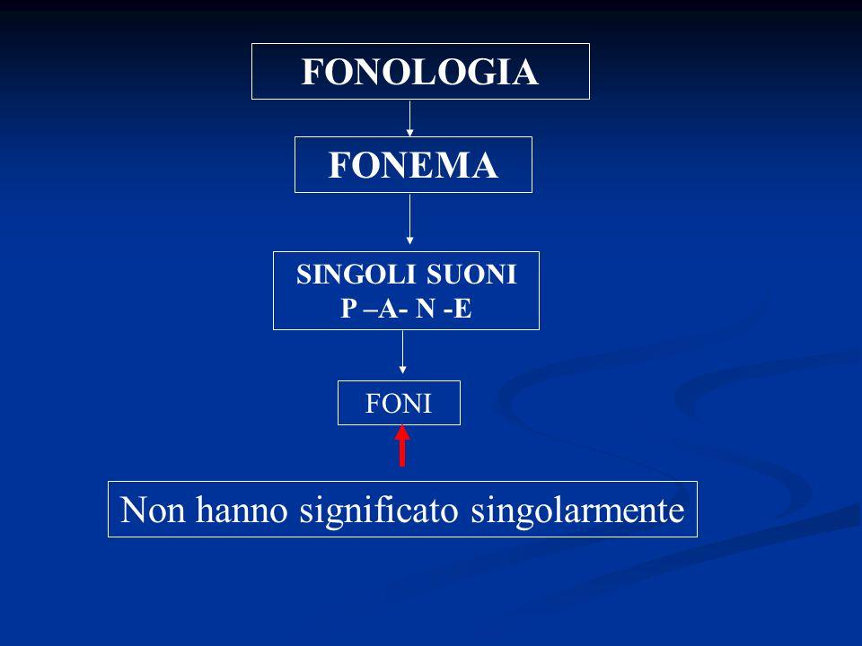 FONOLOGIA FONEMA SINGOLI SUONI P –A- N -E Non hanno significato singolarmente FONI