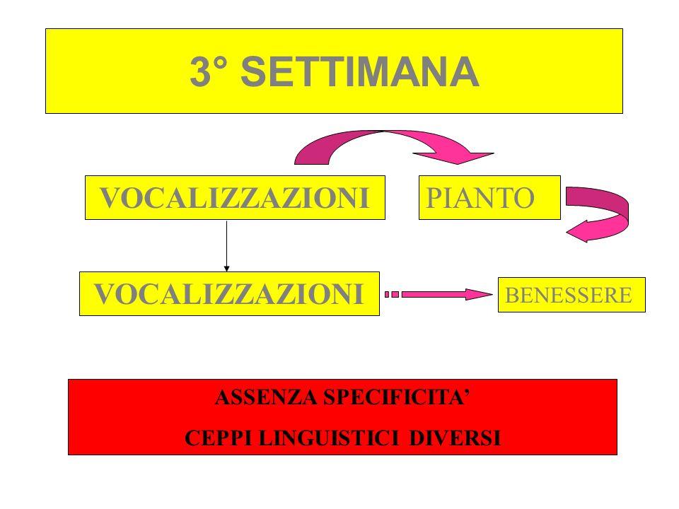 3° SETTIMANA VOCALIZZAZIONIPIANTO VOCALIZZAZIONI BENESSERE ASSENZA SPECIFICITA CEPPI LINGUISTICI DIVERSI