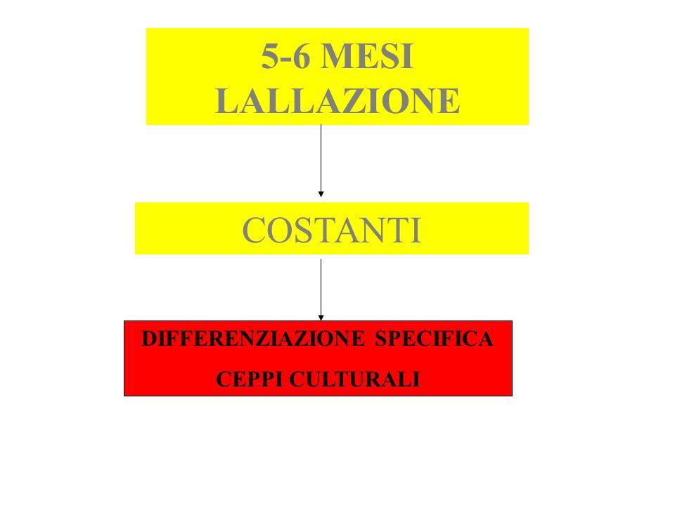 DIFFERENZIAZIONE SPECIFICA CEPPI CULTURALI 5-6 MESI LALLAZIONE COSTANTI