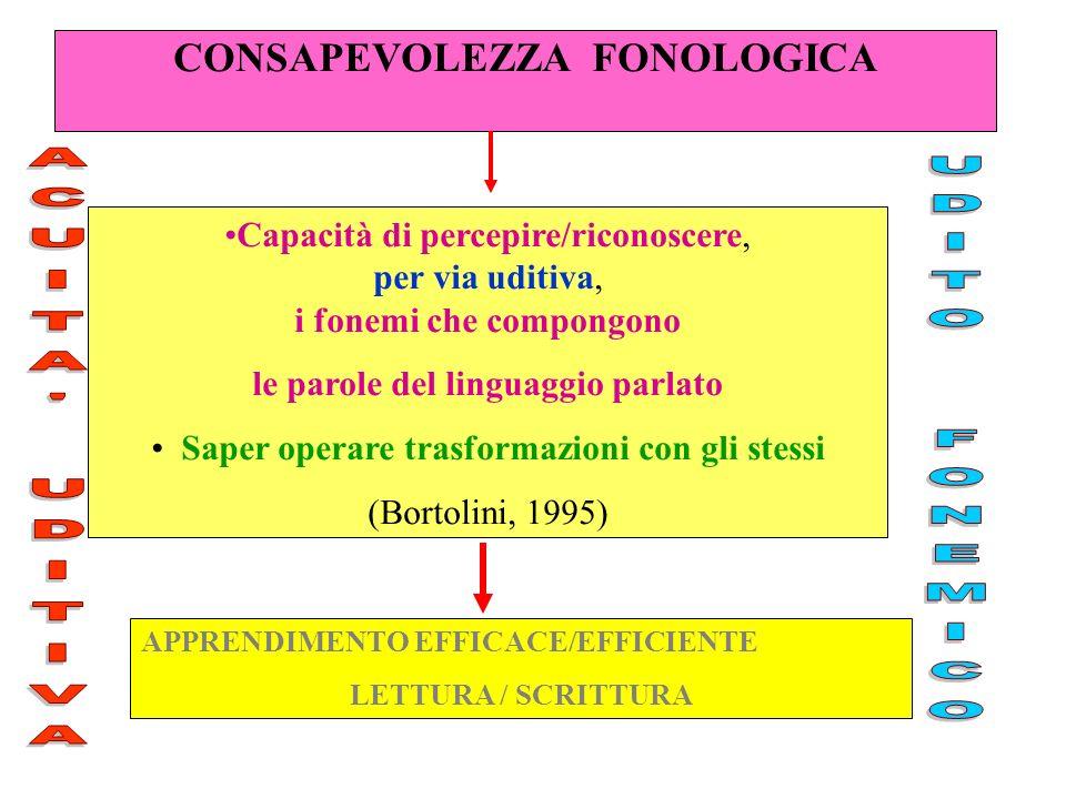 CONSAPEVOLEZZA FONOLOGICA APPRENDIMENTO EFFICACE/EFFICIENTE LETTURA / SCRITTURA Capacità di percepire/riconoscere, per via uditiva, i fonemi che compo